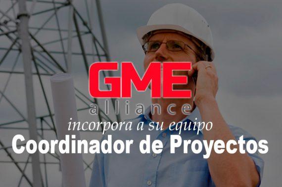 Coordinador de Proyectos